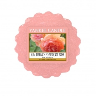Sun-Drenched Apricot Rose- wosk