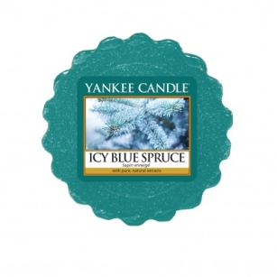 Icy Blue Spruce - Yankee Candlee - wosk zapachowy